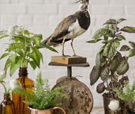 Farm-to-Table Reception Decor