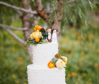 White Dot Rustic Wedding Cake