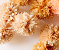 Peach and Cream Pom Poms