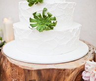 Wood Stump and Succulent Cake