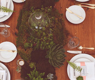 Terrarium Centerpieces and Table Setting
