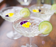 Prosecco and Elder Flower Cocktail with Cucumber and Flower