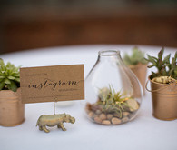 Succulent and Terrarium Instagram Sign Table