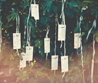 Napa Valley Wedding Escort Cards