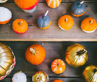 Colored pumpkins