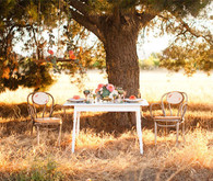 Modern, Rustic Wedding Tablescape