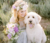 Lavender farm inspiration bride with dog