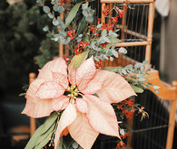 Rustic Christmas inspired birdcage decor