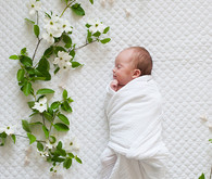 Spring floral newborn photos by Matt & Julie Weddings | Flowers by Bows and Arrows | 100 Layer Cakelet