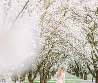 Blossoming almond orchards wedding inspiration