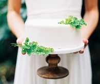 Simple white wedding cake