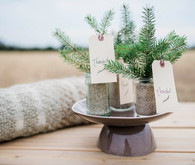 Pine tree wedding favor