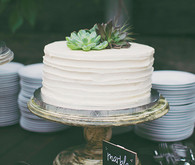 Simple white wedding cake with succulent topper