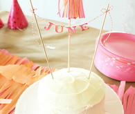 June Bug First Birthday Cake