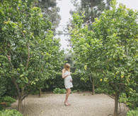 Citrus Grove maternity photo