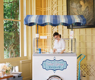 Wedding ice cream cart