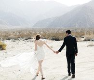 Palm Springs wedding portrait