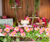 coral charm peony dessert table