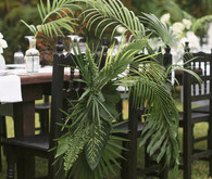 Palm fronds decor