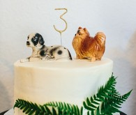 doggy birthday cake