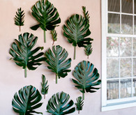 Fig leaf decor