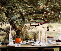 Cozy outdoor tablescape