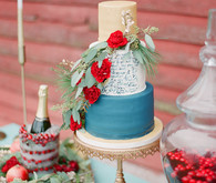 Elegant winter wedding cake