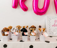 adopt a puppy birthday party