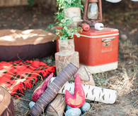 Camping first birthday ideas