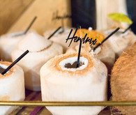 Coconut cocktails