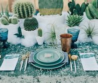 Desert wedding idea
