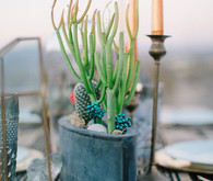 Southwest inspired wedding inspiration