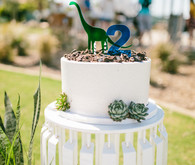 Modern dinosaur 2nd birthday
