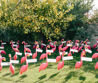 flamingo escort cards