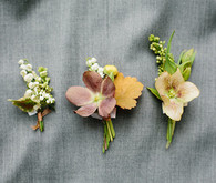 helebore boutonnieres