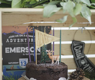 National Parks inspired birthday party ideas