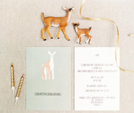 baby animal birthday invites