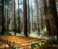 Wedding in Yosemite