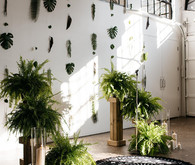 Urban jungle wedding