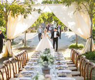Vineyard wedding ideas