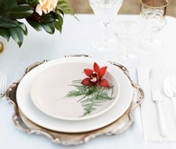 Winter place setting