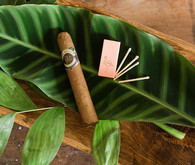 Cigar favors