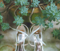 Badgley Mischka bridal shoes