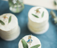 Peter Rabbit spring baby shower