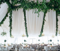 Green and white reception