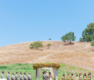 Colorful Northern California wedding