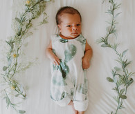 Cactus inspired nursery and newborn photos