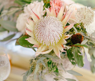 white king protea arrangements