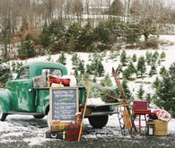 Snowy Christmas tree farm wedding ideas