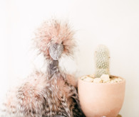 Dreamy white girl's nursery and newborn photos in Los Angeles